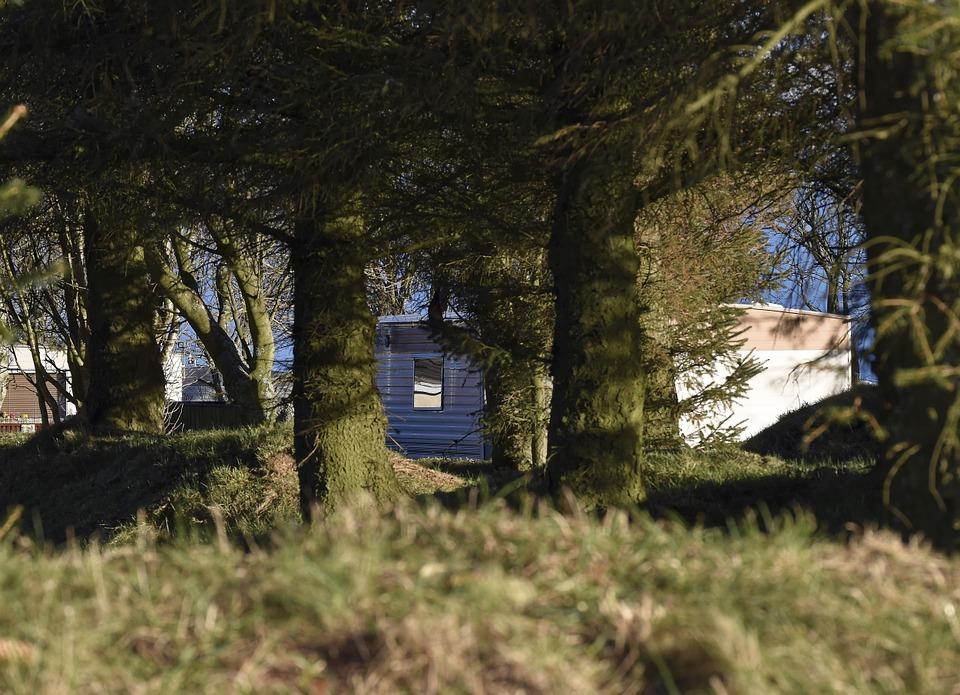 mobilní dům u lesa